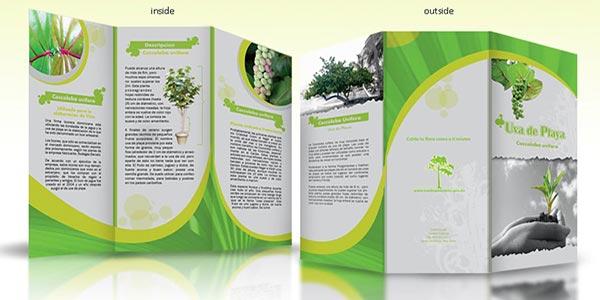 تکنیک های مهم طراحی و چاپ بروشور